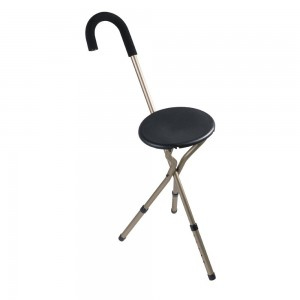 Walking Stick with side table